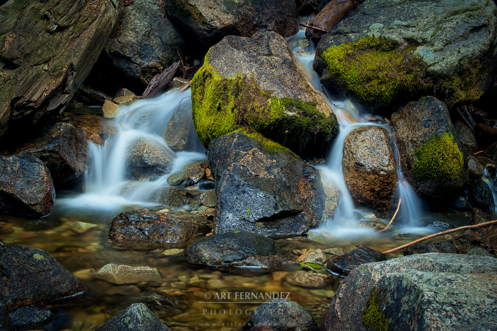Stream by Bridalveil